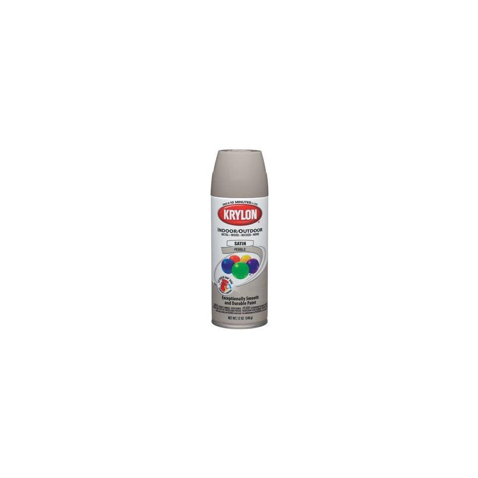 Decorator Indoor/Outdoor Aerosol Spray Paint