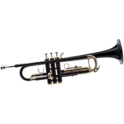 hawk-wd-t314-bk-bb-trumpet-with-case