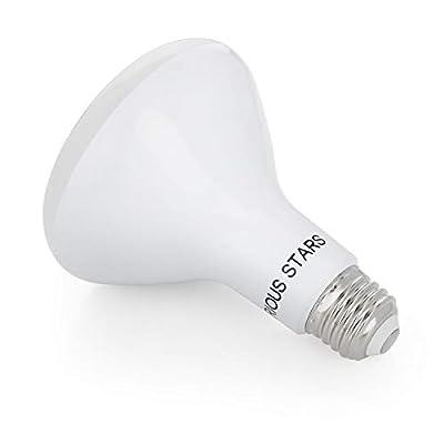 Flood Light Bulbs Indoor, Upgraded BR30 LED Bulbs Dimmable, 11W 75 Watt Equivalent, 5000K Daylight White, Pack of 10