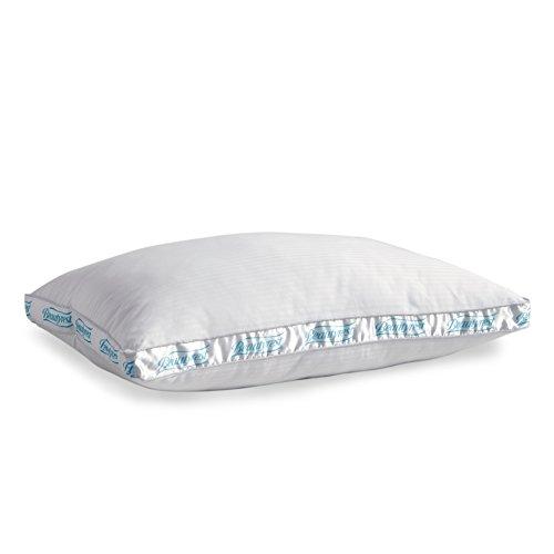 Beautyrest Firm Support NaturesLoft Pillow, Set of 2, King