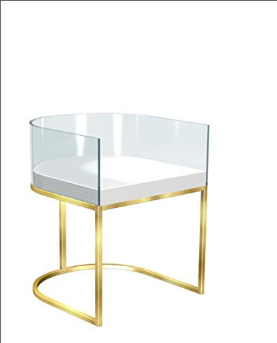Bombay D2024SC0015 LULU Bistro Dining Chair, 25 Inches High, Clear, White, Gold