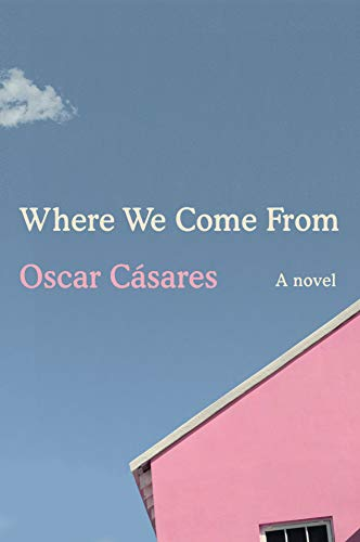 Book Cover: Where We Come From: A novel