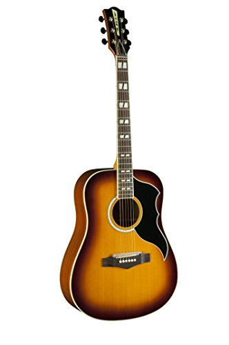 EKO Guitars 06216942 RANGER Series VR VI Dreadnought Acoustic-Electric Guitar, Honey Burst