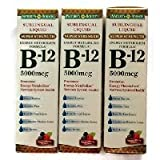 Cheap Nature's Bounty B-12 5000mcg Sublingual Liquid Natural Berry Dietary Supplement – 59 Doses, 2 FZ (Pack of 3) Carrier to shipping international usps, ups, fedex, dhl, 14-28 Day By Dragon Shopping