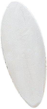 Nobby Os de Seiche avec Dispositif de Maintien pour Oiseau 15-20 cm 1 kg 27007