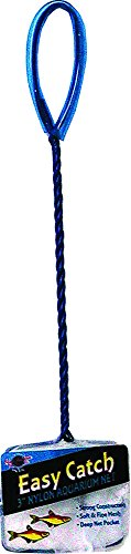 31uiPJiT59L - Blue Ribbon Pet Products ABLEC3 Easy Catch Fish Net, 3-Inch