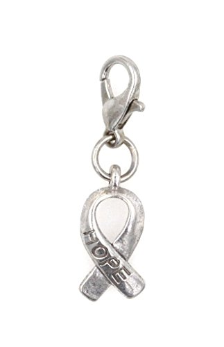 HOPE Awareness Ribbon Clip On Charm Perfect for Necklaces and Bracelets (ZC (Red Awareness Ribbon Charm)