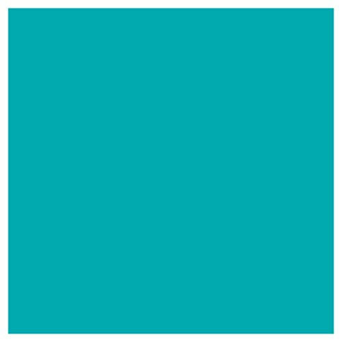 Jillson Roberts 6-Roll Count All-Occasion Matte Finish Gift Wrap Available in 22 Solid Colors, Turquoise