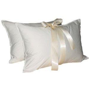 Amazon Com European Goose Down Pillow Set Of 2 Pillows