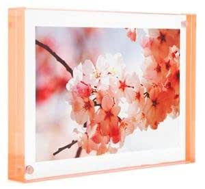Color Edge Magnet Frame by Canetti-Pastel Peach 4x6 inch