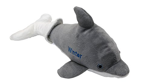 Winter the Dolphin Removable Tail Plush -