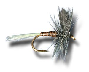 Blue Wing Olive (Blue Wing Olive, Quill Body Fly Fishing Fly - Size 16 - 6 Pack )
