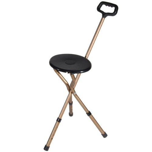 (Folding Seat Cane - 250 lb Weight Capacity)