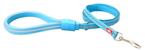 WIGZI 6GLSS58-BL Stink Proof, Waterproof, Reflective 6 Long Dog Leash, Universal Size, Neon Blue