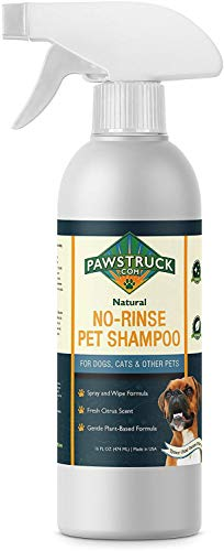 No-Rinse Dry Dog Shampoo for Dogs, Puppies, Other Pets (16 fl oz) Natural & Made in USA Waterless Rinseless Deodorizing Citrus Spray to Clean, Bathe, Freshen & Remove Odors