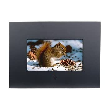 Amazoncom Polaroid 7 Inch Digital Frame Digital Picture Frames