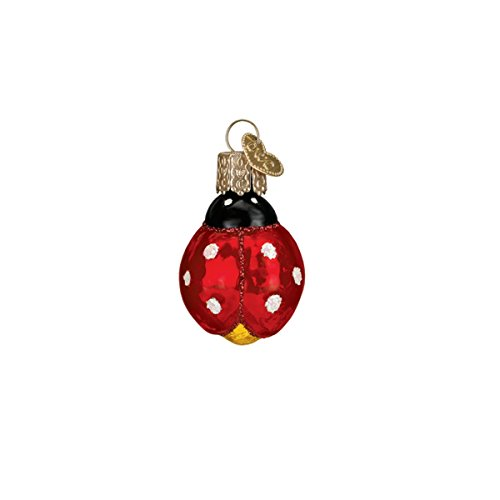 - Old World Christmas Glass Blown Ornament with S-Hook and Gift Box, Mini Garden Collection (Mini Ladybug)
