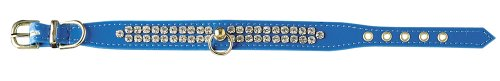 (Pet Supply Imports Blue Arizon 3/4-Inch Vinyl Collar with 2 Rows of Small Rhinestones, Dog Collar, 14-Inch)