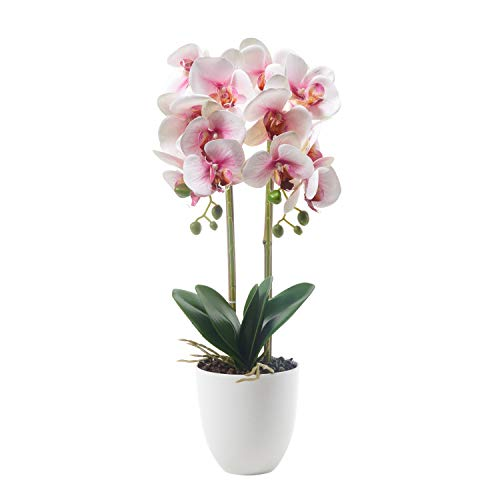 (Alicemall Butterfly Orchid Artificial Flower 12 Heads Pink in White Simulation Phalaenopsis Bonsai with Ceramic Vase Wedding Party Home Centerpiece Decor (Pink White))
