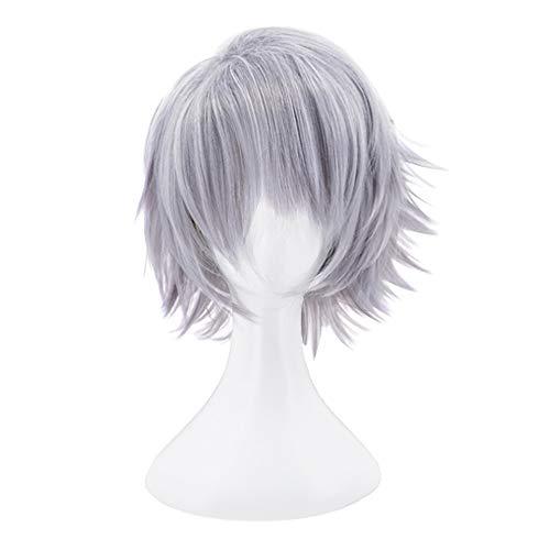 C-ZOFEK Danny Phantom/Fenton Short Grey Wig for Cosplay Costume (Grey)]()