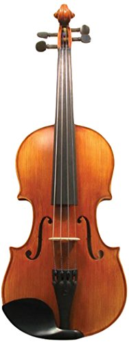 Corde di Salice CS135VN4/4 Advanced Beginner Violin Package - Terzo, 4/4 by Corde di Salice