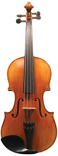 Corde di Salice CS135VN4/4 Advanced Beginner Violin Package - Terzo, 4/4 by Corde di Salice
