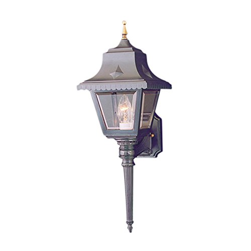 Thomas Lighting SL9235-7 1-Light Black Outdoor Wall Lantern, Clear Beveled Acrylic, Brass Accents