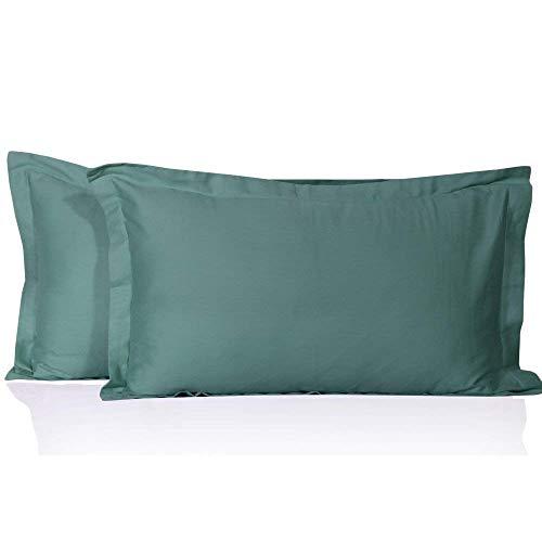 400 Thread Count 2 Pcs Pillow Shams 100% Egyptian Cotton Solid/Plain (Standard 20