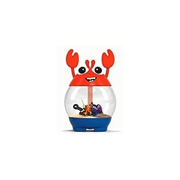 Ciano Acuario My Acuario con Filtro Crab Naranja: Amazon.es: Productos para mascotas
