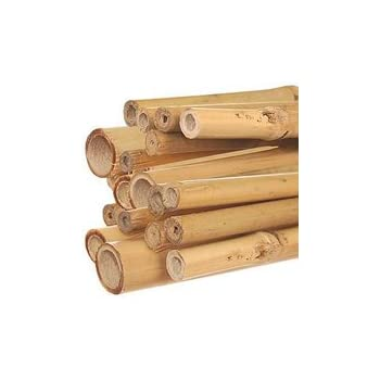 A.M. Leonard Natural First Cut Premium Bamboo Stakes, 3/4 Inch x 6 Foot - Bundle of 100