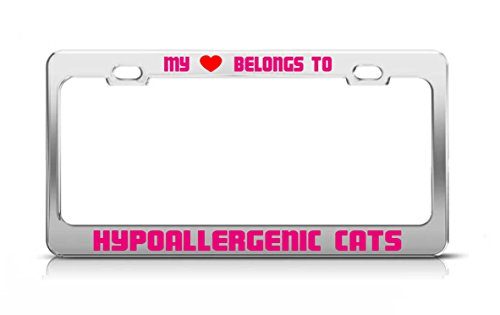 - MY HEART BELONGS TO HYPOALLERGENIC CATS Pet Dog Cat Breed License Plate Frame