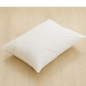 AllerEase Hot Water Wash Pillow - Jumbo