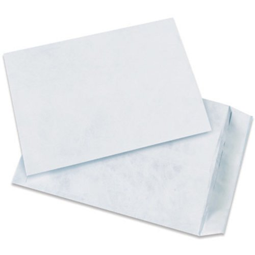 Quality Park TYF1215WH Tyvek Olefin Flat Envelope, 15-1/2'' Length x 12'' Width, White (Case of 100) by Tyvek