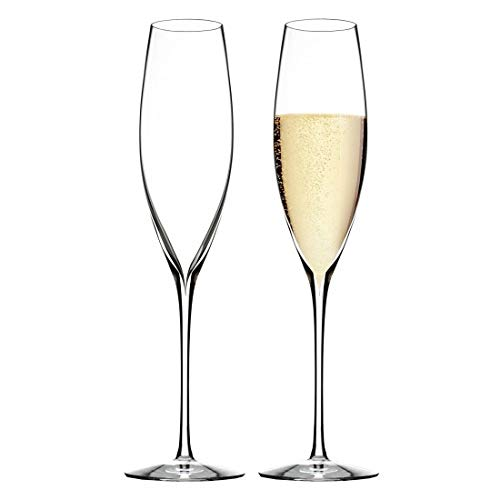 Elegance Champagne Classic Flute (Set of