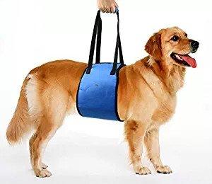 Mitefu Arnés de apoyo para la rehabilitación de perros, ayuda para ...