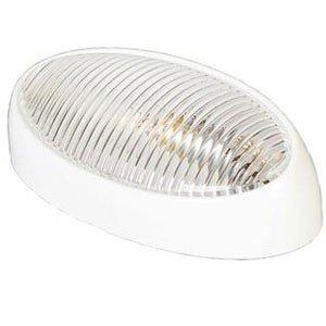 Arcon 51251 - Porche Universal con Lente Transparente y Base Blanca