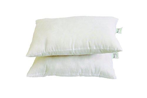 Recron Fiber Dream Pillow – 40 x 61 cm, White, 2 Piece