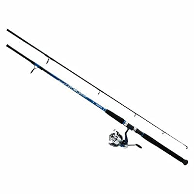 Daiwa D-Wave Saltwater Spinning Combo (2 Piece) from Sportsman Supply Inc.