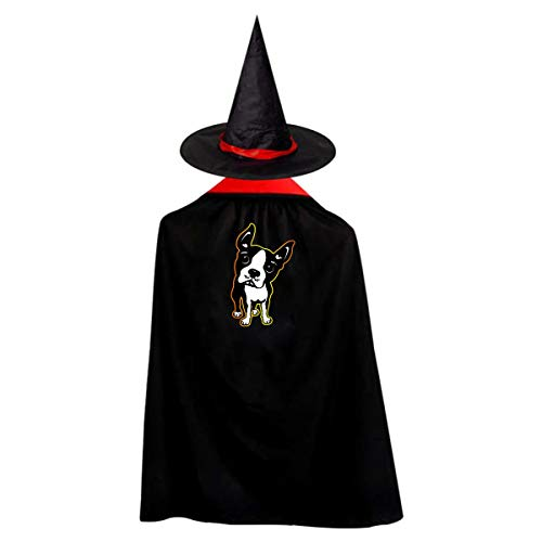 Halloween Children Costume Boston Terrier Dog Wizard Witch Cloak Cape Robe And Hat -