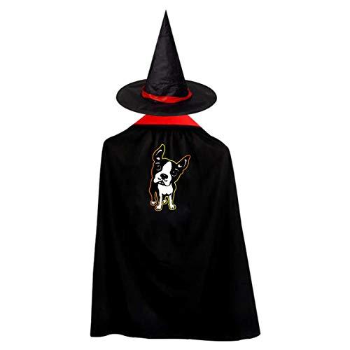 Halloween Children Costume Boston Terrier Dog Wizard Witch Cloak Cape Robe And Hat Set]()