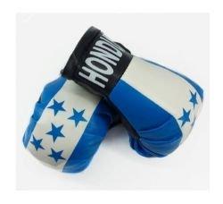 Reppa Mini Boxing Gloves - Honduras