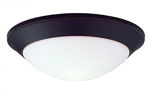 Dolan Designs 5403-78 3Lt Bolivian Rainier 3 Light Flushmount ()