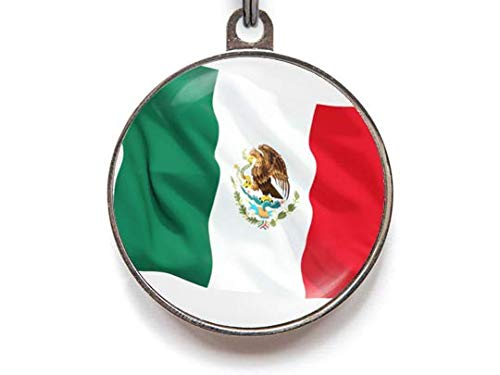 Mexico Flag Pet Tag, Mexican Flag Pet Tag, Mexico Pet Tag, Pet ID Tag, Dog Tag, Pet Tag, Dog Tags, Cat Tag, Cat ID Tag (Large)