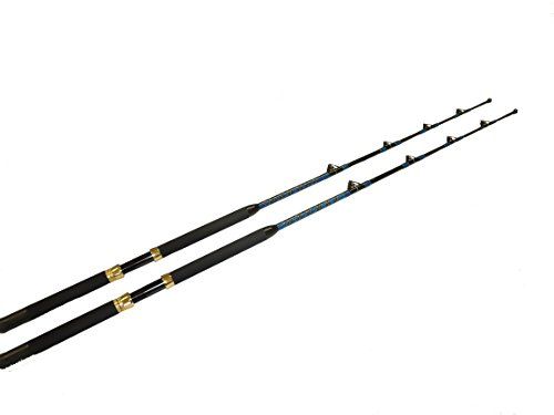 Saltwater fishing roller rods 2 pack 50-80 lb.