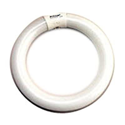 6 Qty. Halco 22W FC8 T9 8IN CircLine Cool White FC8T9CW 22w Linear Fluorescent Rapid Start Cool White Lamp Bulb