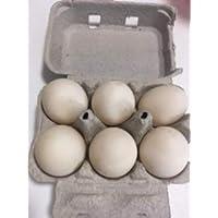 Fresh Duck Eggs(6)
