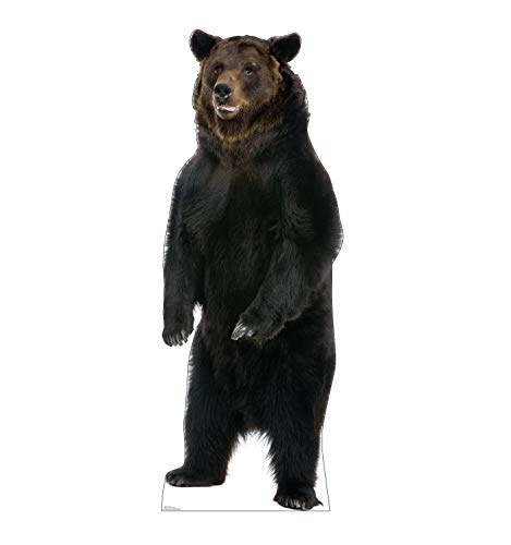 Advanced Graphics Brown Bear Life Size Cardboard Cutout Standup