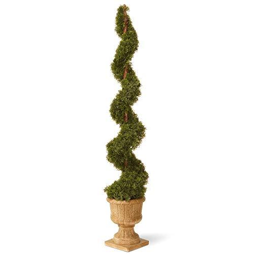 National Tree 60 Inch Cedar Spiral Plant in Decorative Urn (LCYSP4-705-60) -