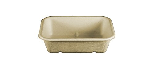biodegradable tray - 8