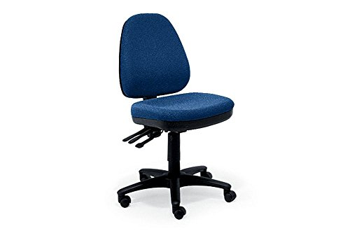 Eurotech Seating Ergonomic Collection Armless Fabric Ergonomic Task Chair, Blue Fabric (Eurotech Office Chairs)